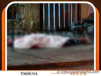 Sicarios DISPARAN a familia en Ciudad del Carmen - Tribuna Campeche
