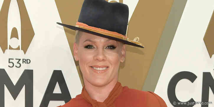Pink Sings 'Make You Feel My Love' on Instagram as Free Concert for Fans