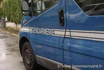 Seynod: les gendarmes du PSIG visés par des jets de cailloux - lessorsavoyard.fr
