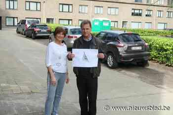 """Gemeente volgt voorstel buurtbewoonster: """"Deze driehoek mag gerust Krolspleintje heten """""""