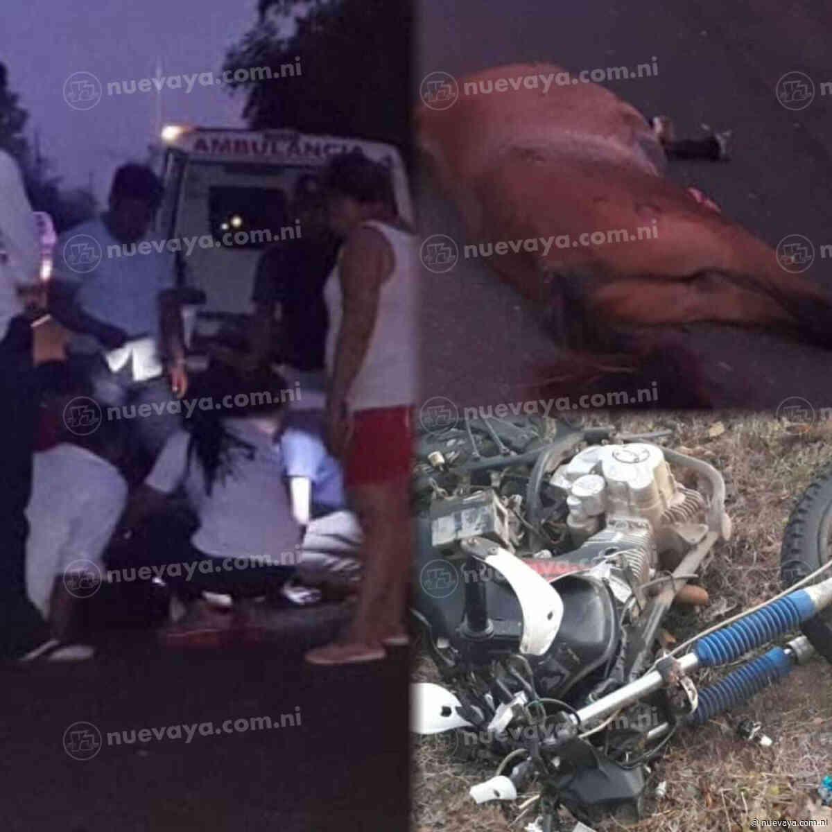 Motociclista está grave tras estrellarse contra un caballo en Acoyapa - Radio YA