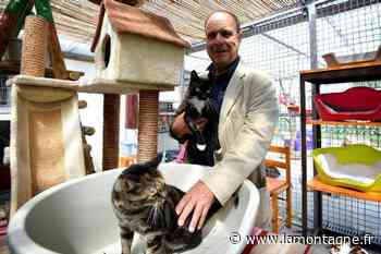 Les refuges d'animaux comme l'APA 63 à Gerzat (Puy-de-Dôme) ferment aussi leurs portes au public - La Montagne