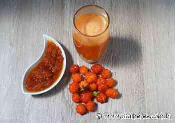 Refresque-se com esse delicioso drink de pitanga - 3 Talheres