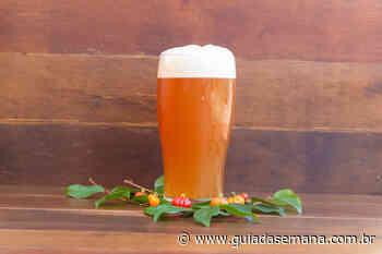 Bares na região sul desenvolveram uma cerveja exclusiva do bairro; saiba mais! - Guia da Semana