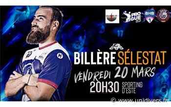 Pro Ligue: Billère Handball Pau Pyrénées Vs Selestat Billère - Unidivers