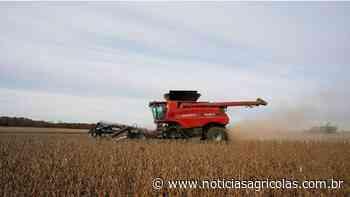 Colheita da soja avança em Canarana-MT, mas com dificuldade pelas chuvas da última semana - Notícias Agrícolas