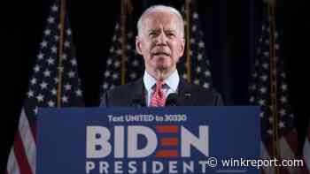Biden likely to win Florida Democratic primary - Wink Report