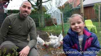Ruhestand für Hühner: Severin Brand (38) aus Ense-Höingen rettet Tiere vor dem Schlachthof | Ense - Soester Anzeiger
