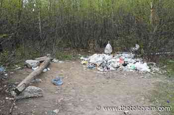 Homelessness in Happy Valley-Goose Bay needs coordinated approach: Mayor - The Telegram