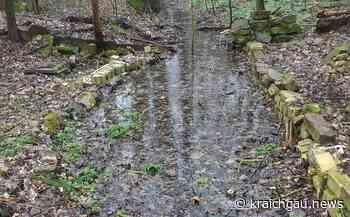 Wasser marsch für das Walzbachtal: Oberlauf des gleichnamigen Baches fließt wieder - Region - kraichgau.news