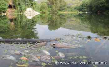 CNDH: emite recomendación por contaminación de Río Suchiapa   El Universal - El Universal