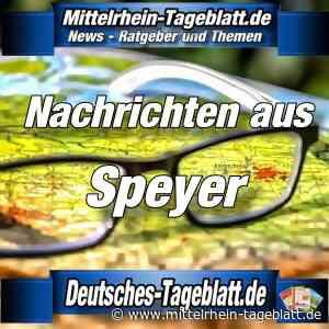 Speyer - Wirtschaft und Corona: Stadtvorstand beschließt Soforthilfemaßnahmen für Unternehmen – Wirtschaftsförderung informiert über Unterstützungsmöglichkeiten von Bund und Land - Mittelrhein Tageblatt