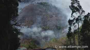 Declaran calamidad pública en Quetame por incendio 'fuera de control' - El Tiempo