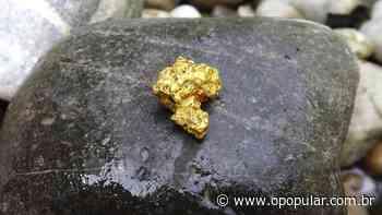 Operação combate extração ilegal de ouro entre Pires do Rio e Orizona, em Goiás - Ludovica