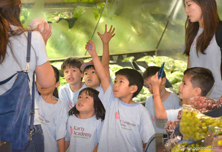 Summer Camp Guide 2020: Foreign-language camps immerse kids in Mandarin, Spanish, French and more
