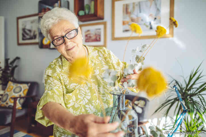 Successful Aging: I have free time after decades of hard work, so what's the problem?