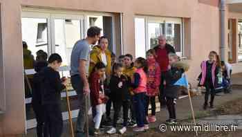 Florensac : un potager à l'école - Midi Libre