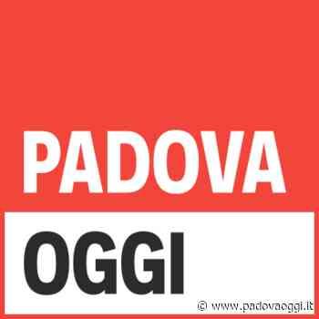 ADDETTO ALLA VENDITA ZONA SANTA GIUSTINA IN COLLE (PD) - PadovaOggi