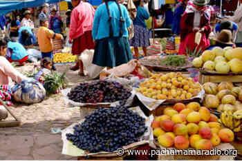 Precios de productos de canasta básica familiar subieron en 50% en Atuncolla - Pachamama radio 850 AM