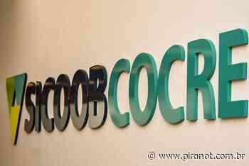 Sicoob Cocre abre sete novas vagas de trabalho para Piracicaba e Charqueada - PIRANOT