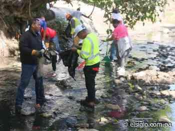 Realizan limpieza del Río de Pan de Azúcar por mortandad de peces - elsiglo.com.pa