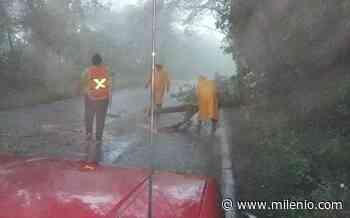 Ocampo y Tula quedan incomunicados por lluvias - Milenio