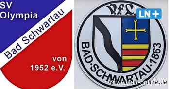 Vereine - Fusion von VfL und SV Olympia Bad Schwartau verschoben - Lübecker Nachrichten