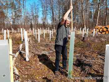 Tettnang: Am 21. März ist internationaler Tag der Wälder: Hier werden neue Bäume gepflanzt - SÜDKURIER Online