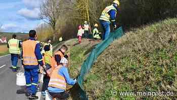 In 30 Jahren zigtausende Kröten und Frösche bei Waltershausen gerettet - Main-Post
