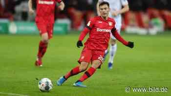 Bayer Leverkusen: Chance aufs Ja von Charles Aránguiz groß wie nie - BILD