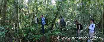 Expeditie Borneo: jonge biologen op pad - Nature Today