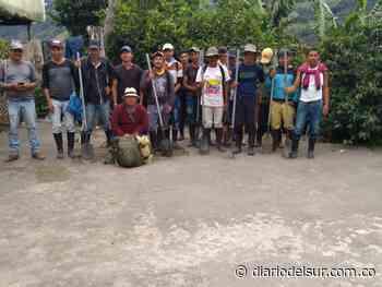 Comunidad con tierras erradicadas exigen apoyo en El Tablón de Gómez - Diario del Sur