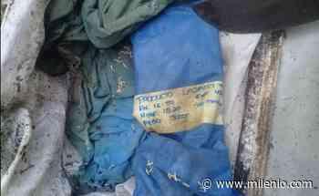 Hallan restos de recién nacido en barranca en Veracruz - Milenio