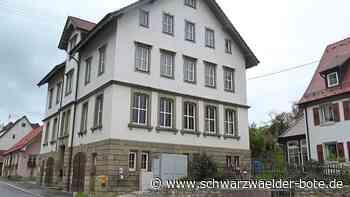 Haigerloch: Schwalben finden am Rathaus neue Heimat - Haigerloch - Schwarzwälder Bote