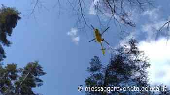 Infortunio sul lavoro, boscaiolo soccorso in Val Dogna - Il Messaggero Veneto