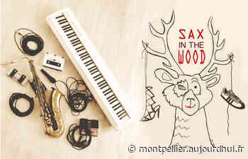 Concert Sax in the Wood - SALLE SAINT-EXUPERY, Caissargues, 30132 - Sortir à Montpellier - Le Parisien Etudiant
