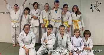 Kinder- und Jugendlehrgang des Ju-Jutsu Verbandes mit 12 Perler Kindern - Saarbrücker Zeitung