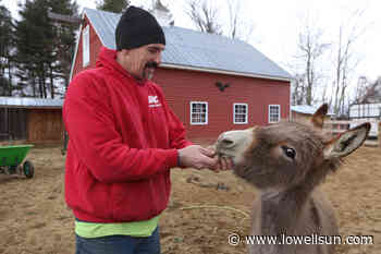 Pelham, N.H., residents repeal backyard livestock ordinance - Lowell Sun