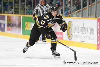 Former Cape Breton Eagle traded to Rimouski - SaltWire Network