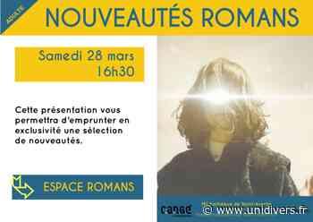Nouveautés romans Médiathèque de Cangé 28 mars 2020 - Unidivers