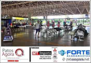 Terminal Rodoviário de Patos de Minas tem praticamente todas as viagens suspensas - Patos Agora