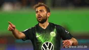 """VfL Wolfsburg – Mehmedi: """"Ein Admir hat in 2 Wochen nichts verlernt"""" - BILD"""