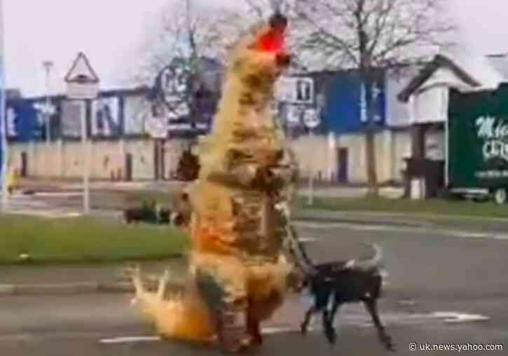 Dog Walker in Scotland Dons Dinosaur Suit During Coronavirus Lockdown