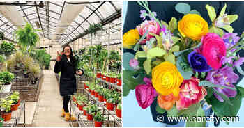 7 Calgary Plant Shops That Will Deliver Spring To Your Home - Narcity