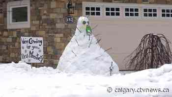 Calgary families break up the self-isolation blues with some snow sculptures - CTV News