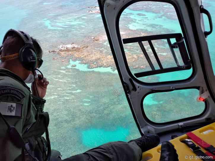 Bombeiros retomam buscas por turista desaparecida em praia de Maragogi - G1