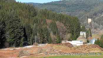 Furtwangen: Riesiges Lager für Sturmholz entsteht - Furtwangen - Schwarzwälder Bote