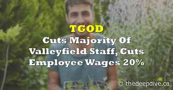 TGOD Cuts Majority Of Valleyfield Staff, Cuts Employee Wages 20% - The Deep Dive