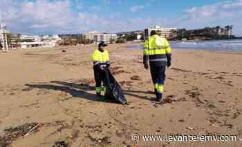 Xàbia limpia una playa a la que no va a ir nadie - Levante-EMV