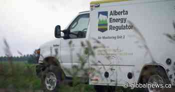 Alberta Energy Regulator names senior Saskatchewan government official as CEO